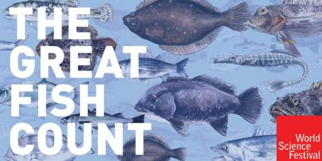 The Great Fish Count- World Science Festival